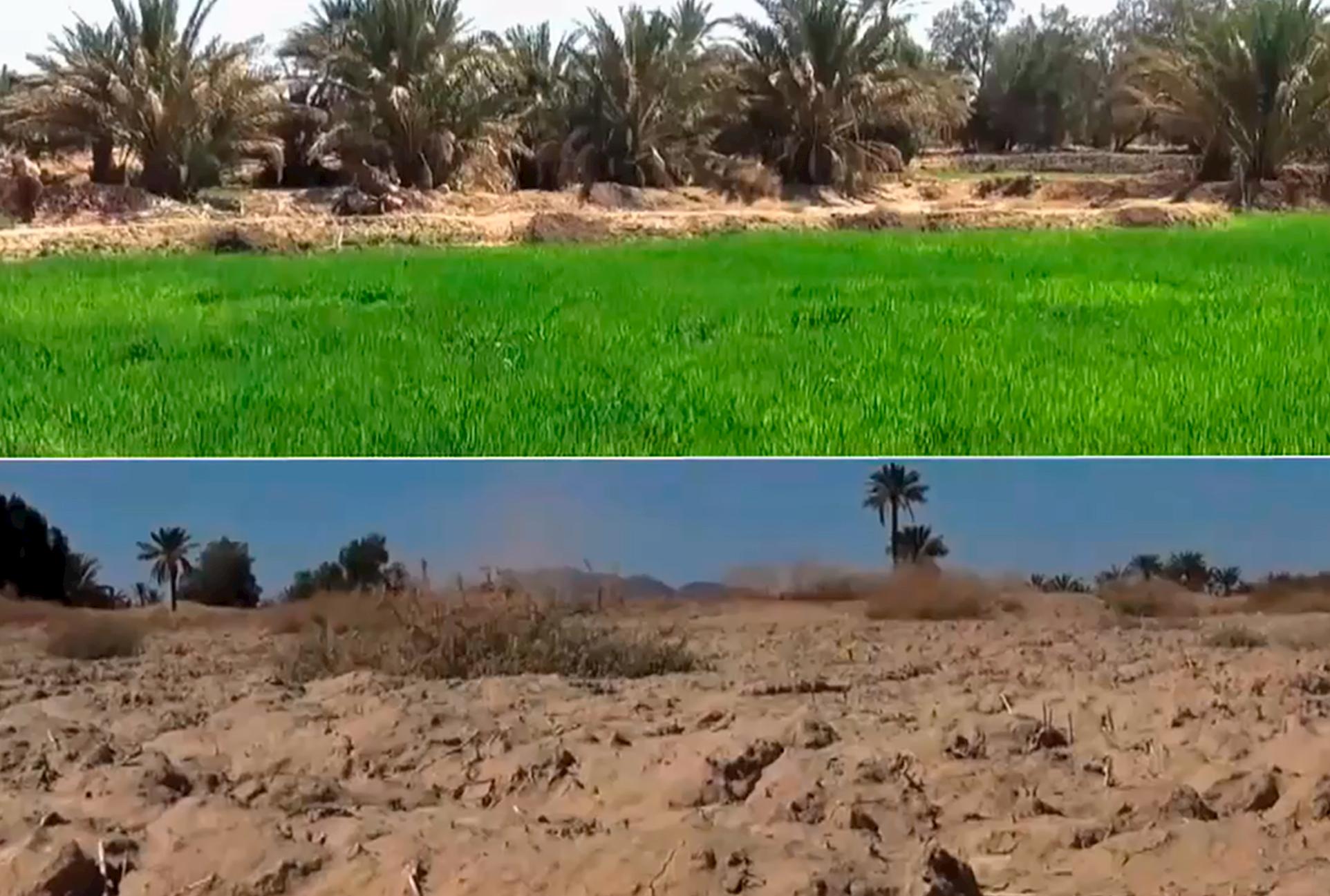 Agua para la agricultura