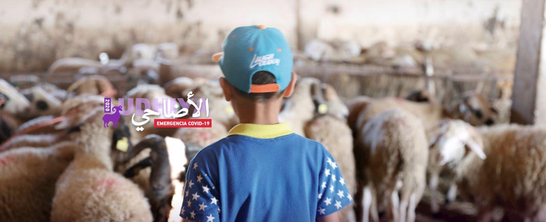 Campaña Udhiya solidaria 2020