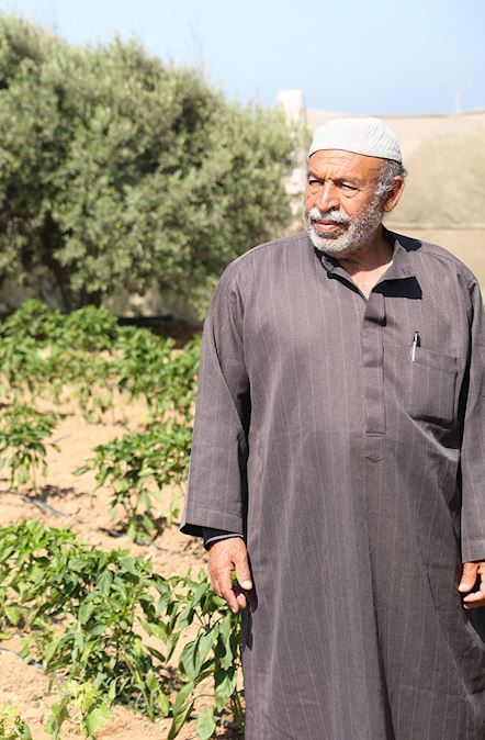 Fondo proyectos de Sadaqah Jariya