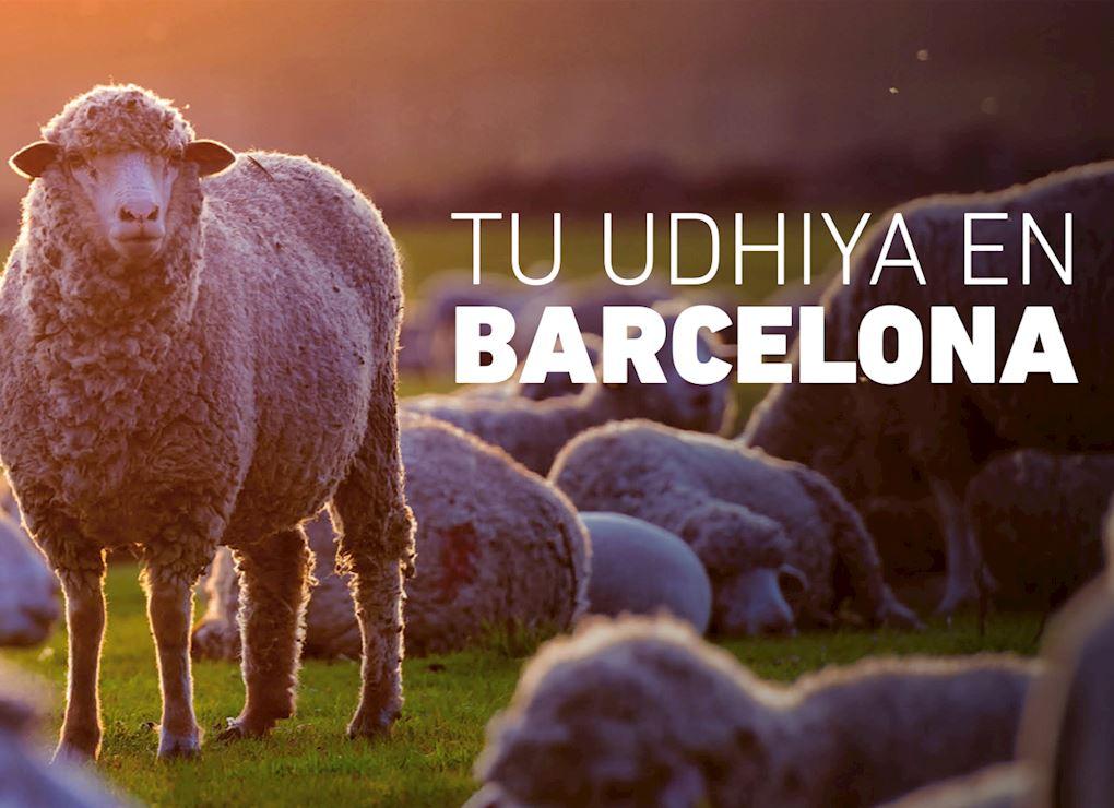 Tu Udhiya en Barcelona