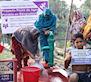 Construye un pozo en Bangladesh